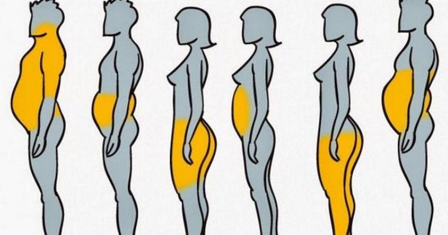 Como reducir la grasa abdominal en casa photo 5