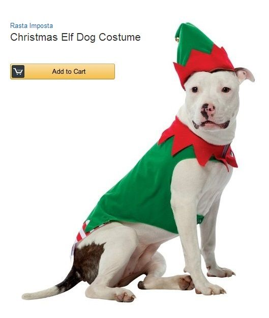 Dogs In Christmas Costumes Christmas Dog Costume Dog Elf