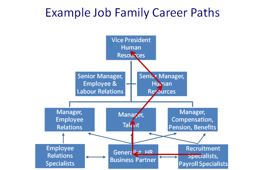 hr job family career path