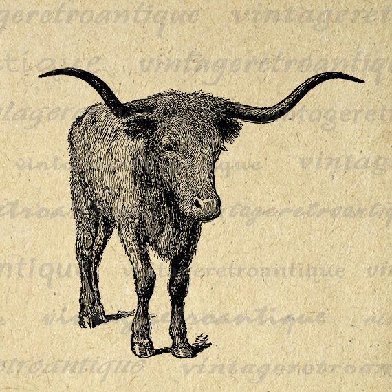 Texas Longhorn Bull Printable Bull Horns Graphic Western Farm ...