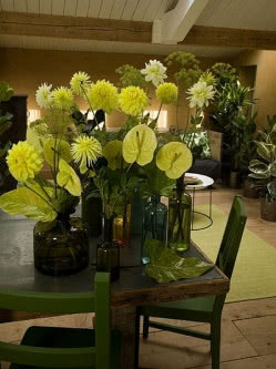 Zielone Naczynia I Butelki Tworza Harmonie Z Kwiatami Dalii Dahlia W Kolorze Limonki Zoltymi Liscmi Anturium Anturium I Galaz Zantedeschia Caladium Dahlia