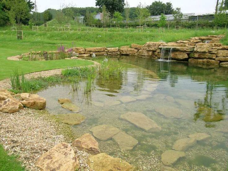 Natural swimming pools natural swimming pools lake and for Koi swimming pool