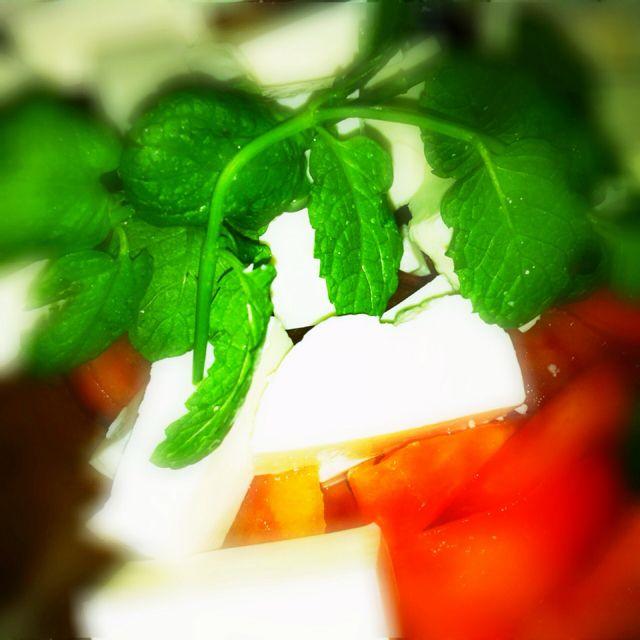 Ensalada de tomate, queso fresco, menta y aceite de oliva