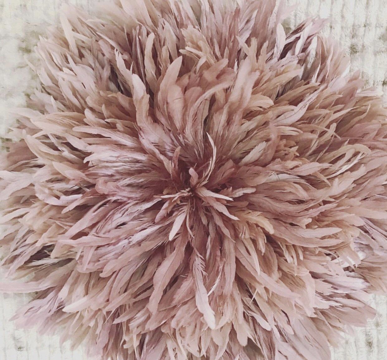 Blush JuJu Hat Feather Wall Decor (With images) | Feather ...
