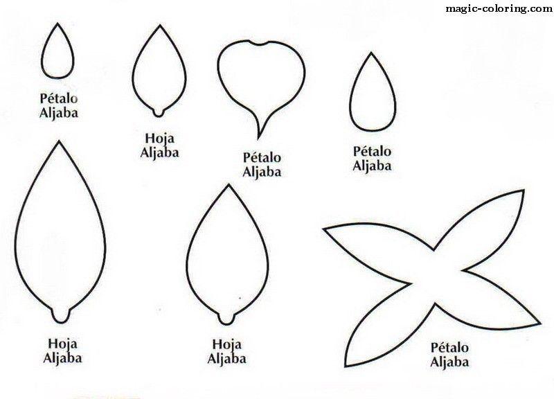 MAGIC-COLORING | Fuchsia flower template