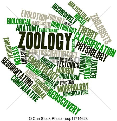God Formed Every Beast Of The Field And Every Bird Of The Heavens Genesis 2 19 Learn How To Define Zoology And Th Zoology Zoologist Career Zoology Career