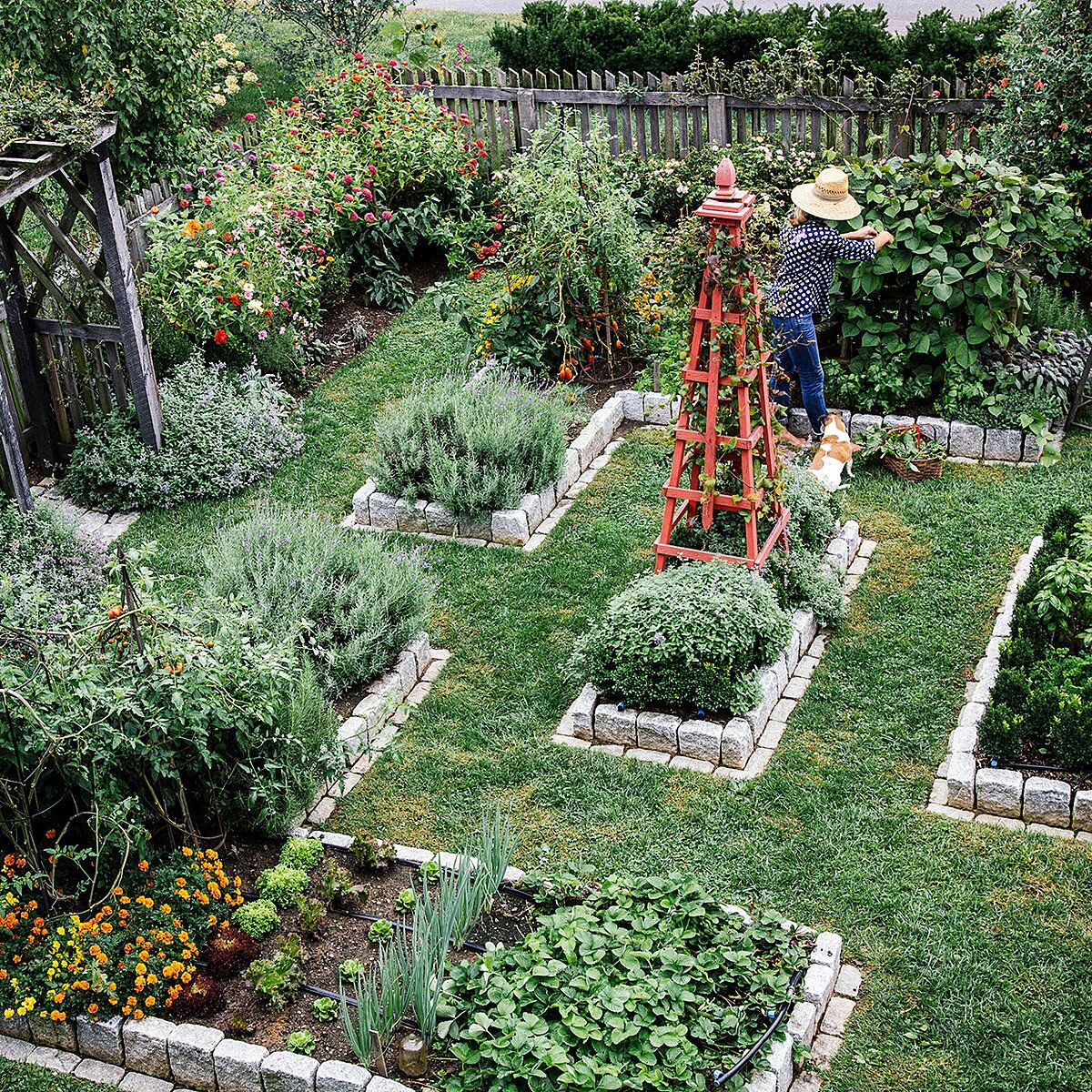 13 Herbs To Fill Your Container Gardens With Fresh Flavors And Scents In 2020 Victory Garden Plants Gardening Trends