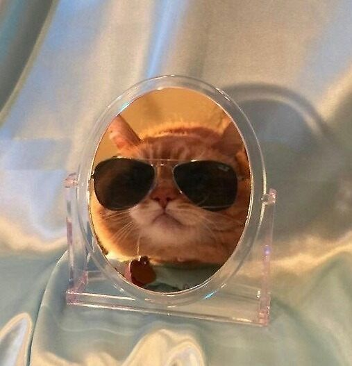 aesthetic cat with sunglasses  by kshend | Redbubble