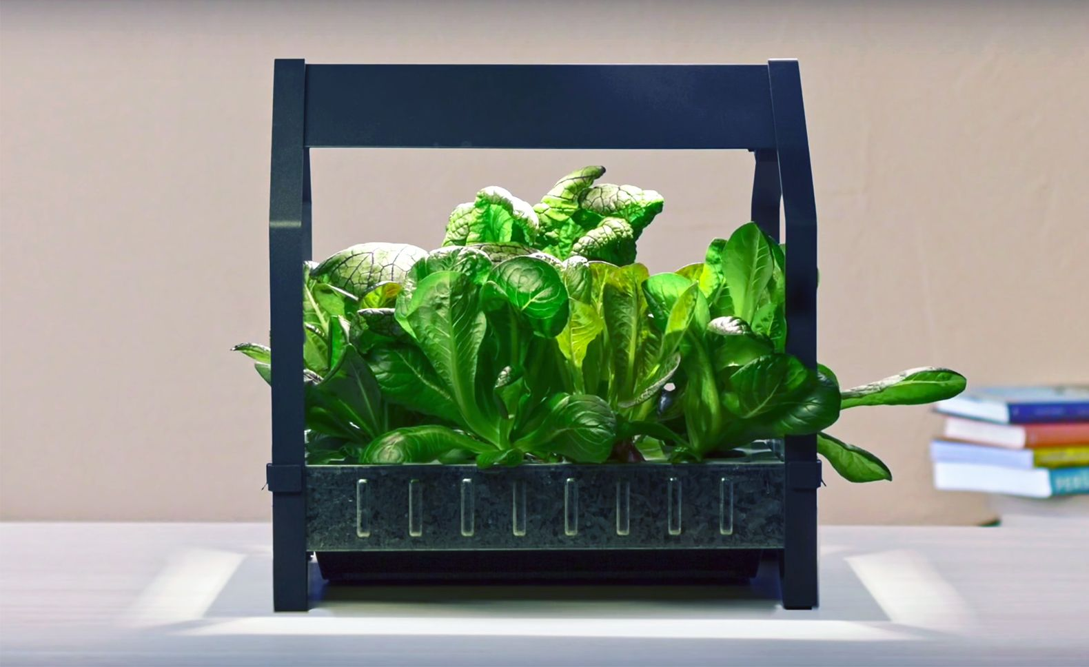 Ikea launches indoor garden that can grow food all yearround