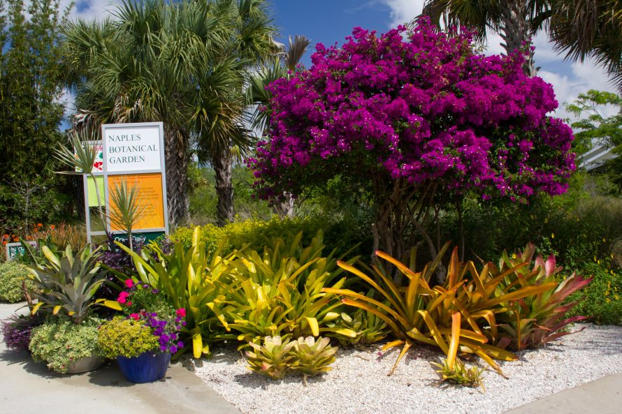 Naples Botanical Garden Entrance Garden entrance