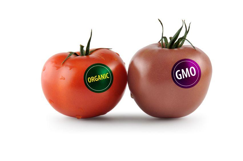 Gmo Vs Organic Foods Healthy Benefits Of An Organic Garden