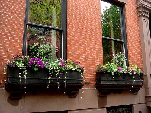 Pictures Of Brick Houses With Dark Casement Windows Window Bo