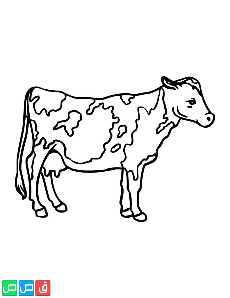 رسومات اطفال للتلوين حيوانات Moose Art Animals Art