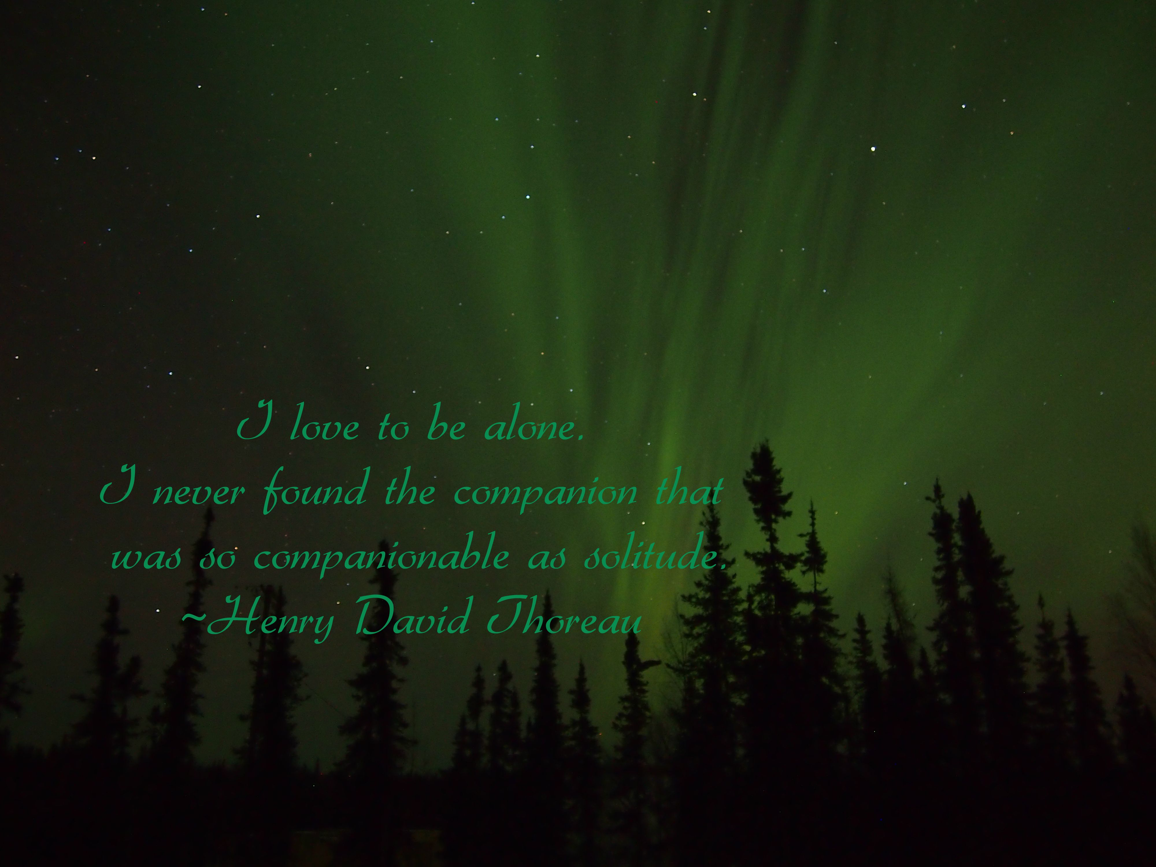I love to be alone. I never found the companion that was so companionable as solitude. Henry David Thoreau www.auroranotify.com photo by ABN