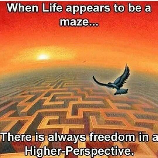 Freedom (Quote)