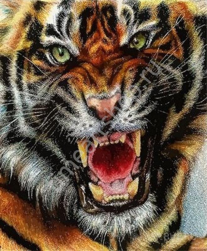 Оскал тигра, картина раскраска по номерам, размер 40*50 см ...
