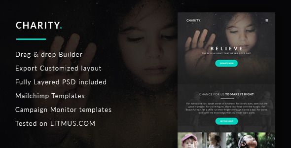 Charity Nonprofit\/NGO\/Fundraising Email Template  Charity - ngo templates