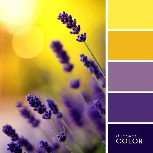 Color Palette | Paint Inspiration | Paint Colors | Paint Palette ...