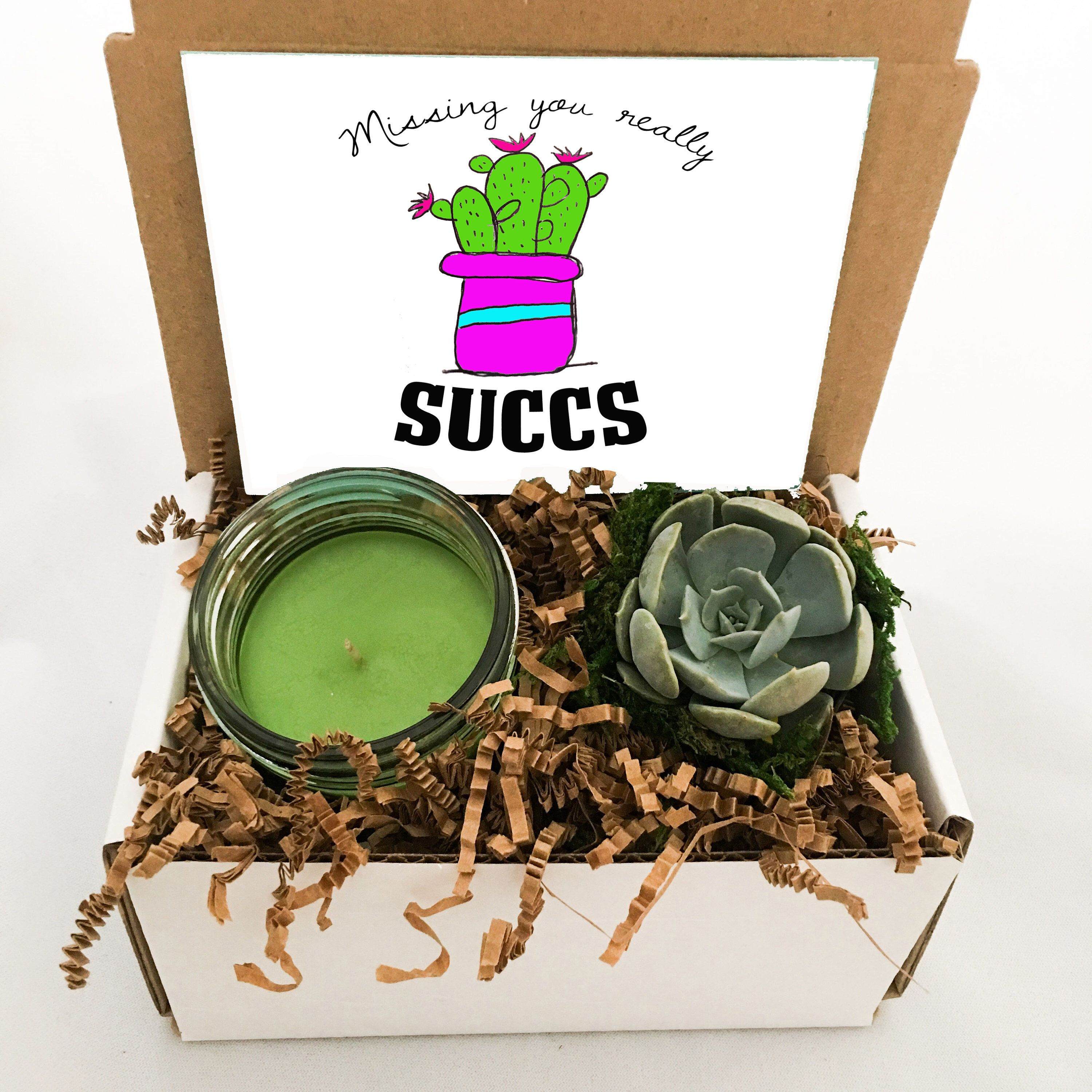 Missing You Cactus Succulent and Handmade scented Candle