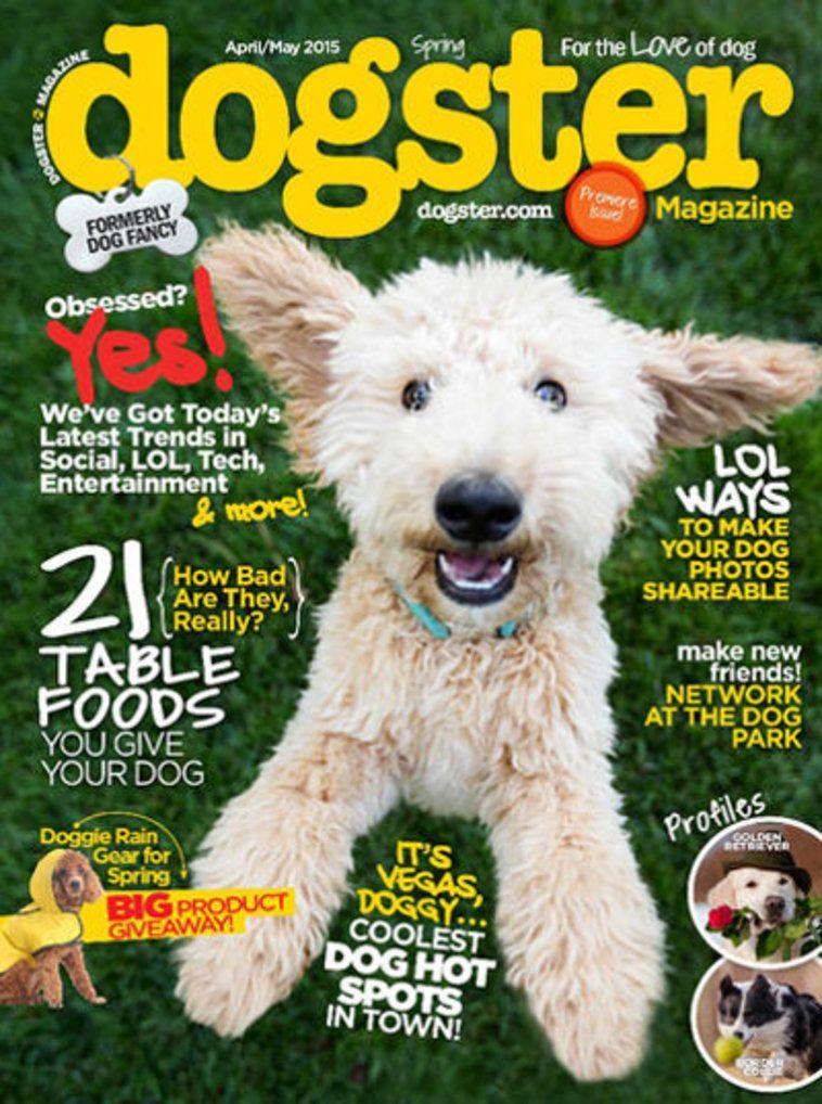 Dogster magazine subscription dog magazine animal