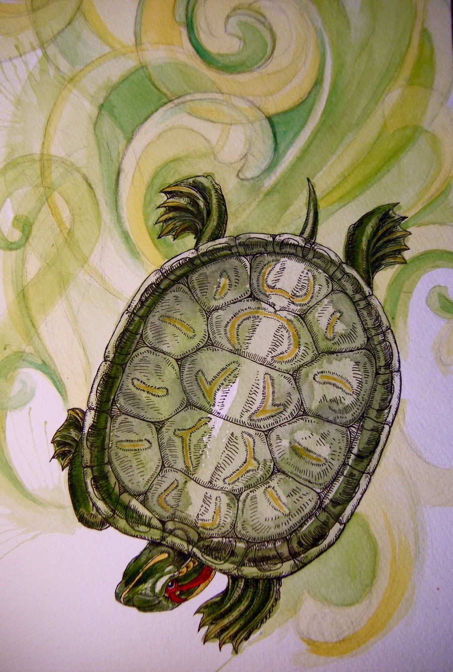 READ EARED SLIDER TURTLE ILLUSTRATION PAINTING PET REPTILE ART REAL CANVAS PRINT