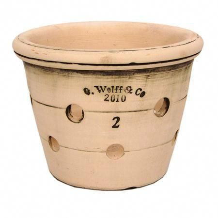 Terra Cotta Orchid Garden Pot by Guy Wolff #Orchids -   24 white garden pots ideas