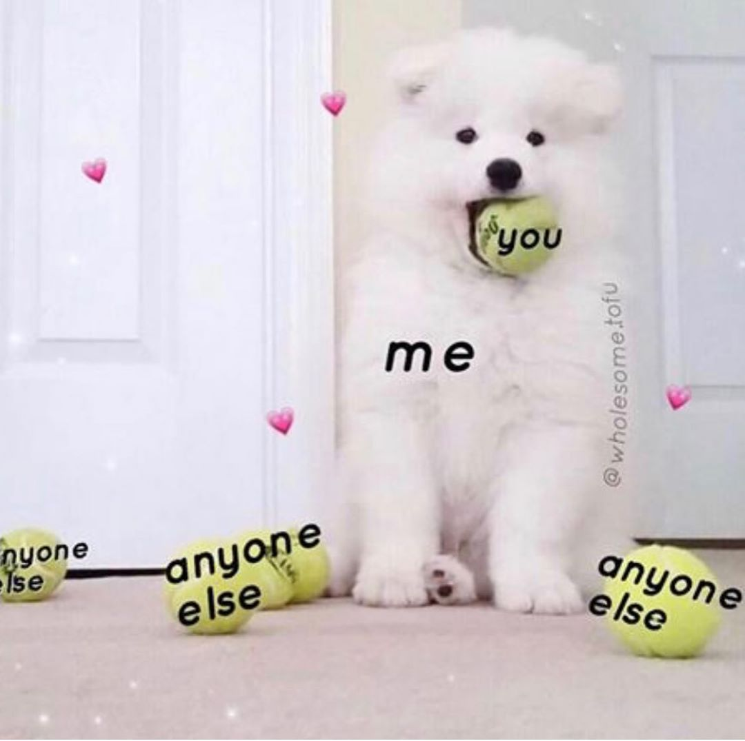 Wholesome Cherry On Instagram My Captions Reworking Now Where R You Guys From X Follow Wholesome Chxrr Cute Love Memes Cute Memes Love You Meme