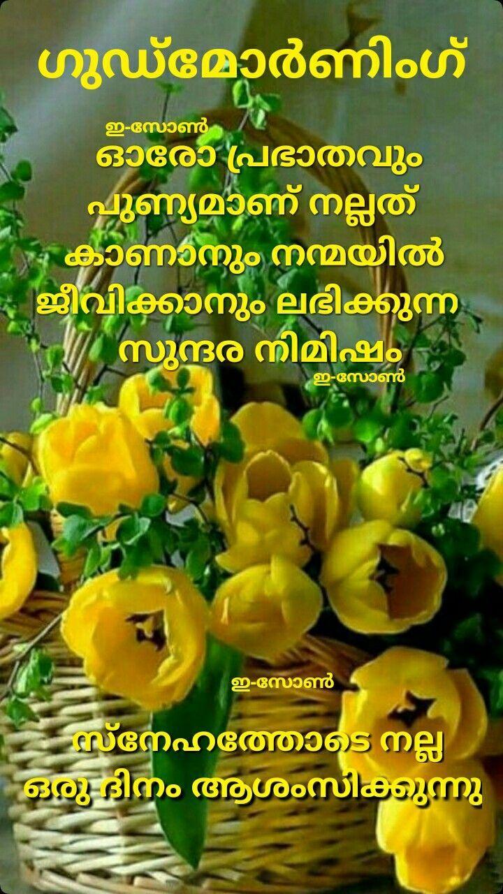 Good Morning Quotes Malayalam Birthday Quotes Flirty Good Morning Quotes Good Morning Quotes Morning Quotes