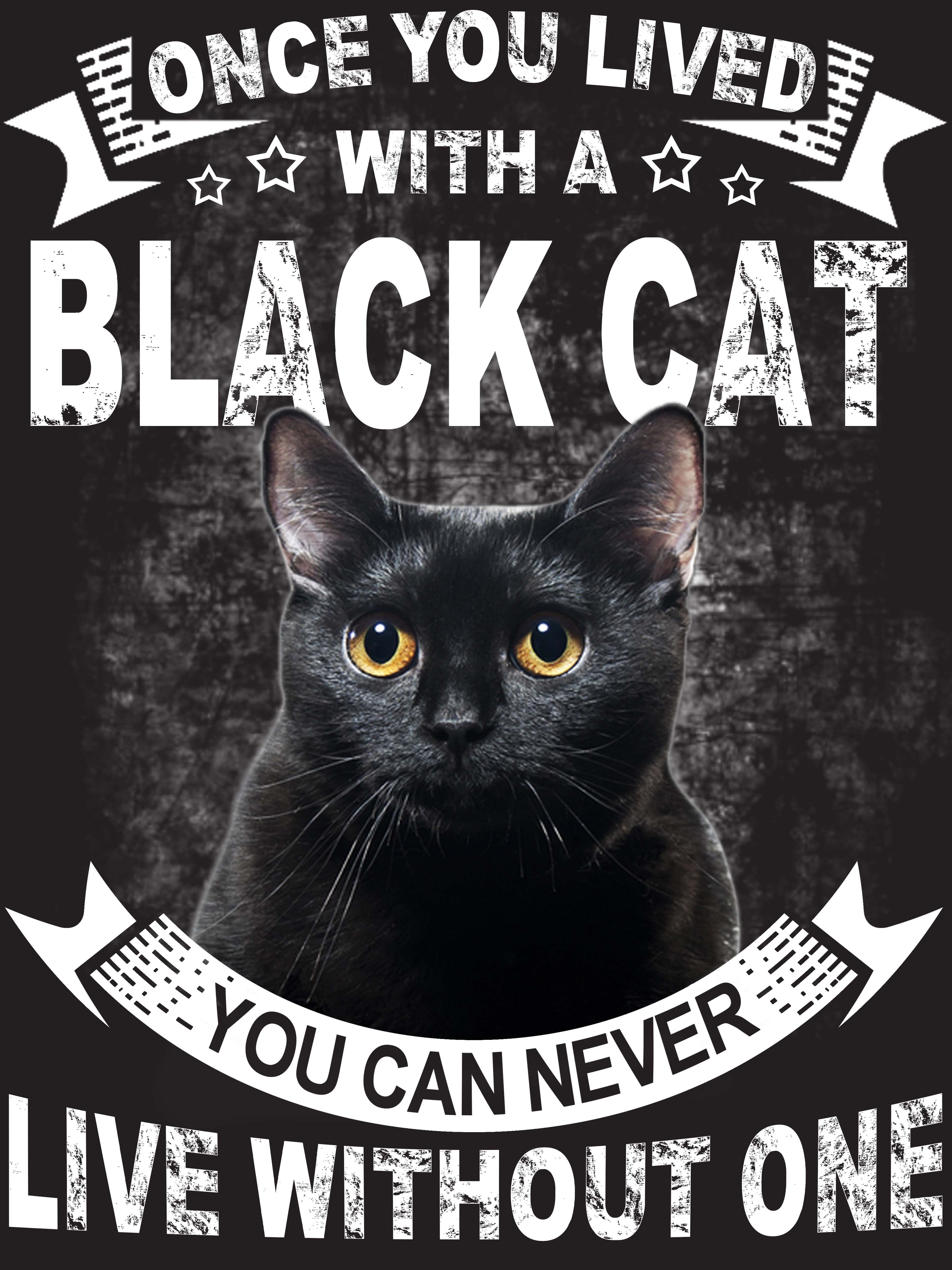 Once you lived with a Black Cat cats blackcat catlovers