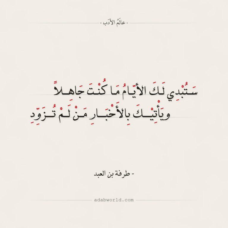 شعر طرفة بن العبد ستبدي لك الأيام ما كنت جاهلا عالم الأدب In 2020 Funny Arabic Quotes Me Quotes Quotes