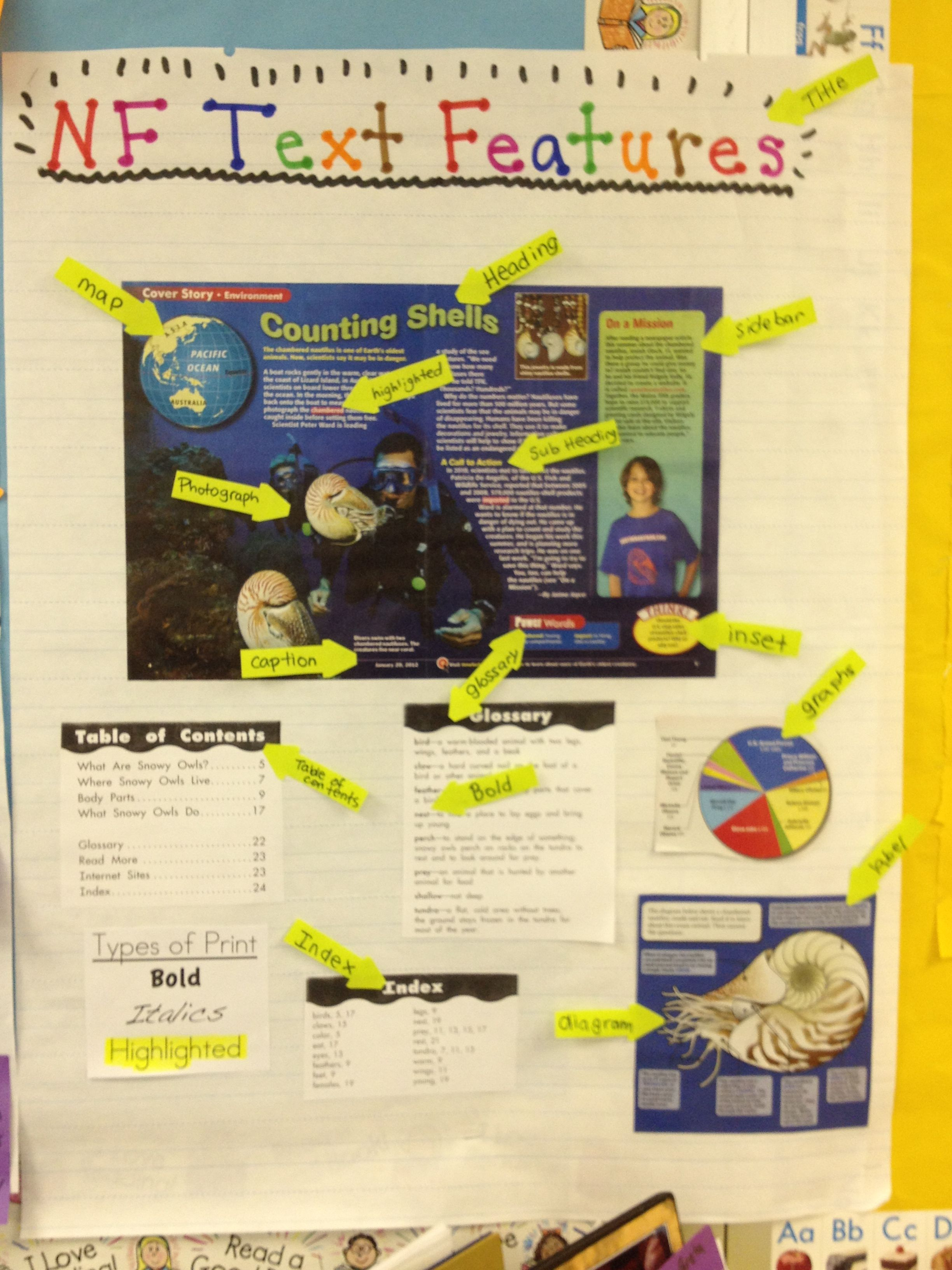 Non Fiction Text Features Chart