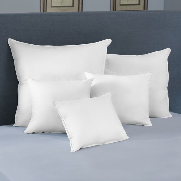 22X22 Pillow Insert Enchanting Euro Square Pillow Insert  Pacific Coast  $23 For A 22X22 Inspiration