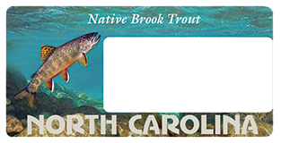 Help Protect The Native Brook Trout By Purchasing The