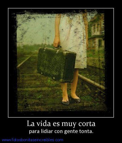 Frases Para Facebook En Español La Vida Es Muy Corta Frases Para Facebook Frases Imagen Para Facebook