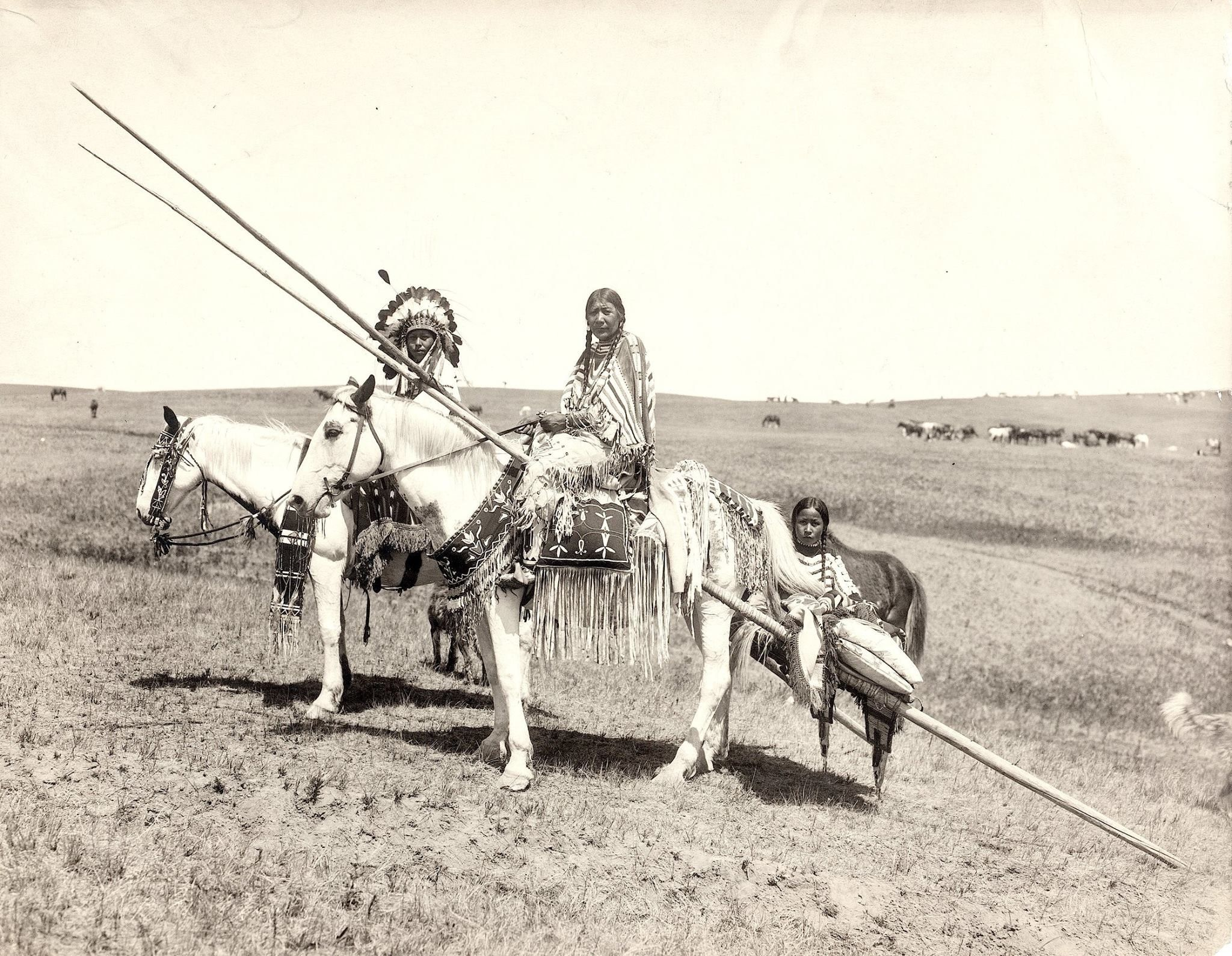 Pin on Blackfoot Family and Groups