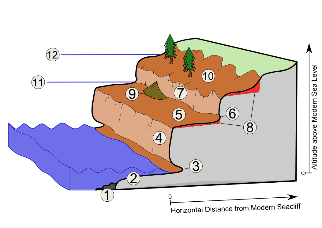 Wave Erosion Diagram Images Lesson Plans Pinterest Diagram And