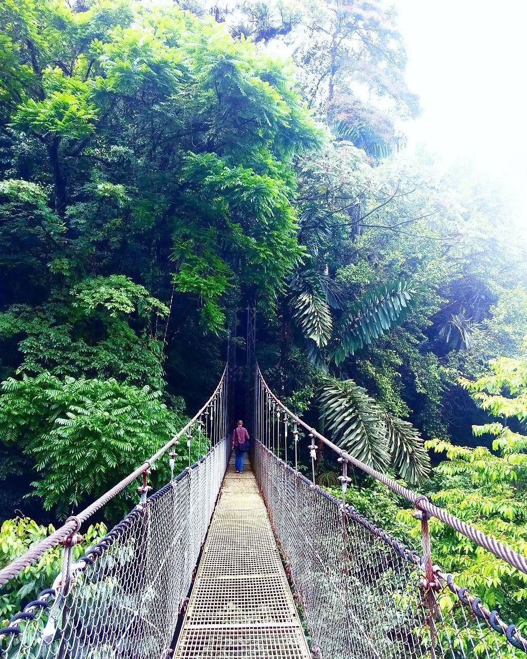 Costa Rica – Une Paire de Voyageurs  Arenal Volcano, Hanging Bridges  #hangingbridge #arenalvolcano #costarica #travel