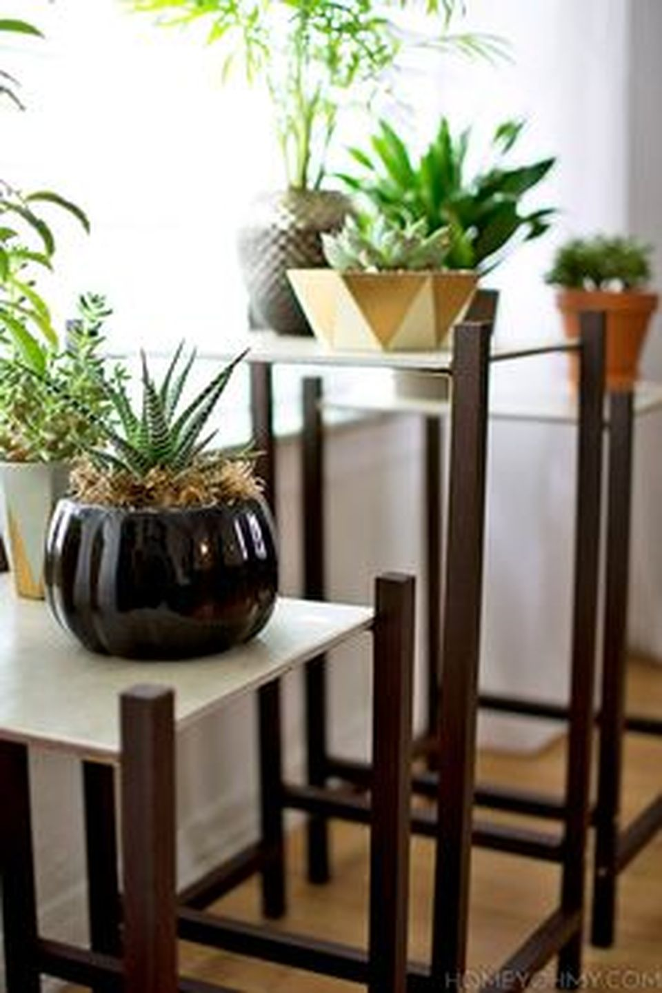 Cool Plant Stand Design Ideas for Indoor Houseplant ... on Amazing Plant Stand Ideas  id=16069