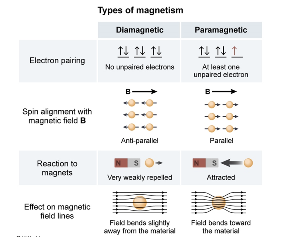 Diamagnetic Paramagnetic Magnetic Field Could Someone Explain