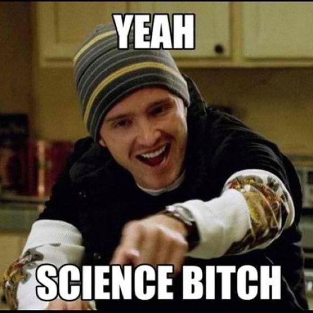 Jesse Pinkman Sciencebitch Breakingbad Brba Http Www Pinterest Com Carola017 Breaking Bad Bad Memes Breaking Bad Jesse Pinkman