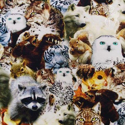 Stoffen - wilde dieren tricot - bambiblauw