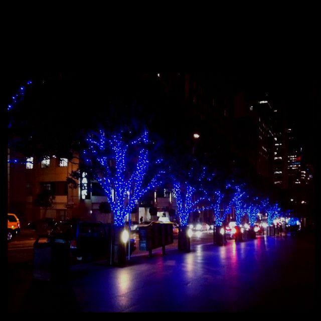Blue Christmas lights San Francisco Beautiful Blue Christmas