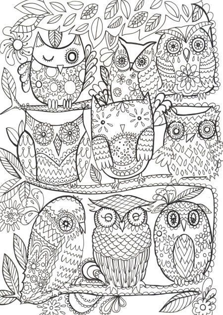 Owls color | coloring pages | Pinterest | Owl, Adult coloring and ...