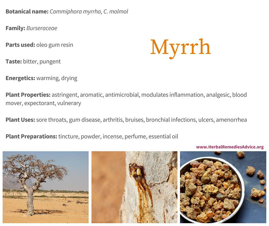 While the Western world most appreciates myrrh for its ability to heal wounds and address mouth health, Traditional Chinese Medicine uses it mostly to move blood.