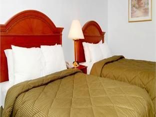 Comfort Inn Lehigh Valley West Allentown Allentown Pa United States Hotel Cool Beds Comfy Bed