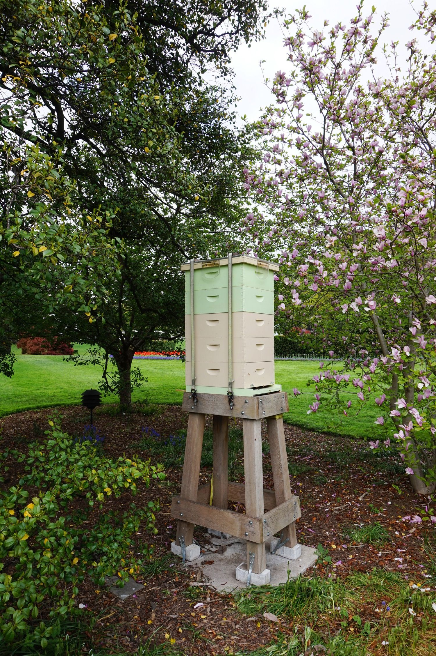 A Visit to The White House Garden & Beehive | Beehive and Gardens