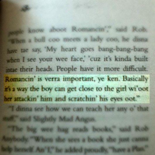 Romance According To Rob Anybody Wee Free Men Literature