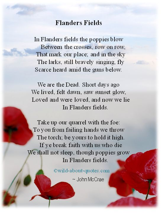 Flanders Fields | Memorial day quotes, Anzac day ...