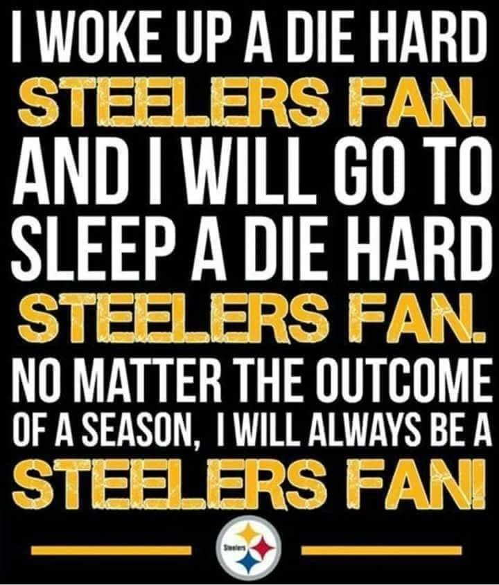 Pin On Steelers