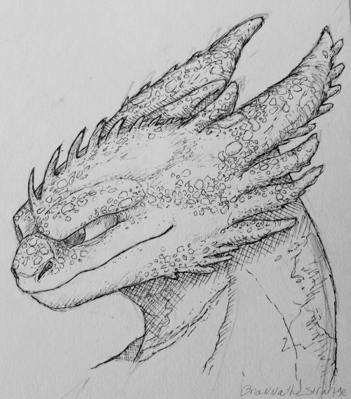 Toothless Night Fury Httyd Night Fury How Train Your Dragon Httyd